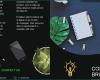 Free Printable Tri Fold Brochure Template