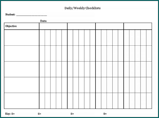 Daily Checklist Template Example
