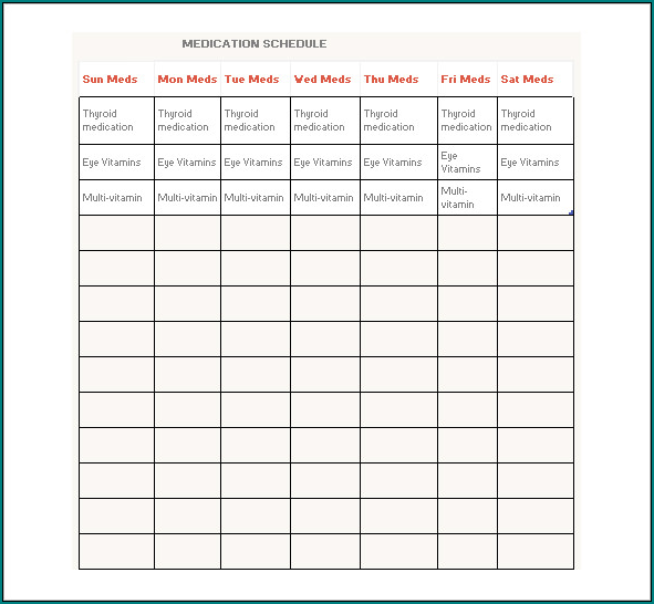 Daily Medication Schedule Template Sample