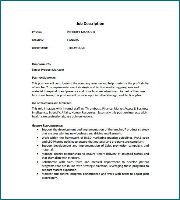 Job Description Template Example