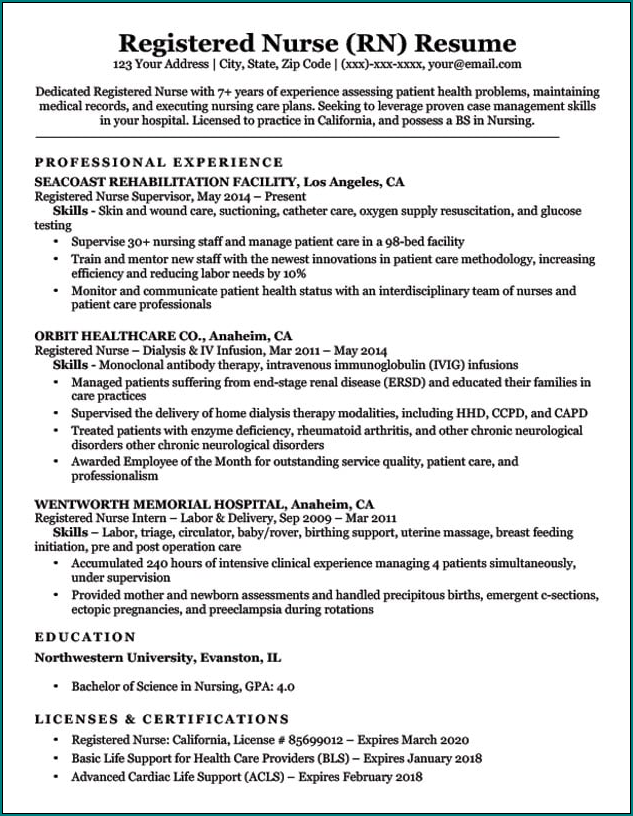 Nursing Resume Template Example