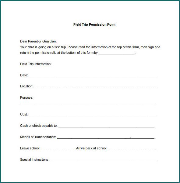 Parent Permission Form Example