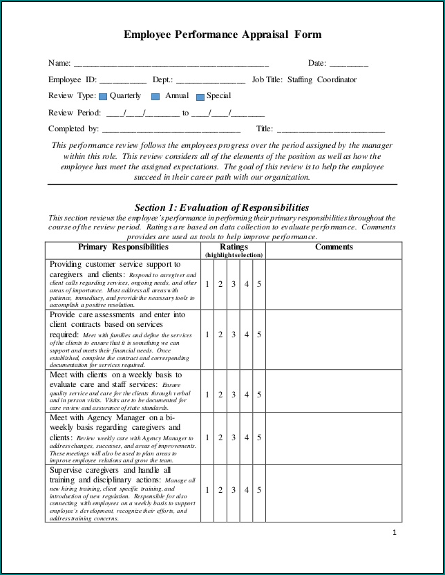 Performance Appraisal Form Sample
