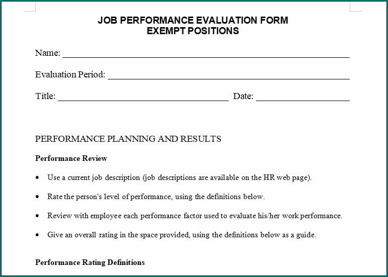 Performance Evaluation Template