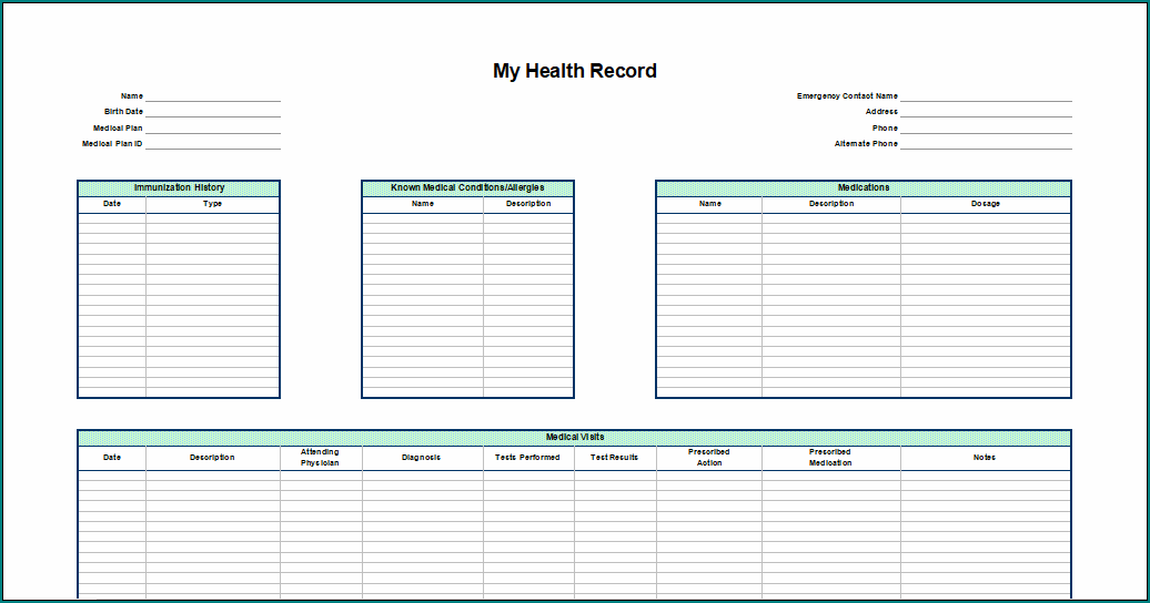 Personal Medical Health Record Sheet Template