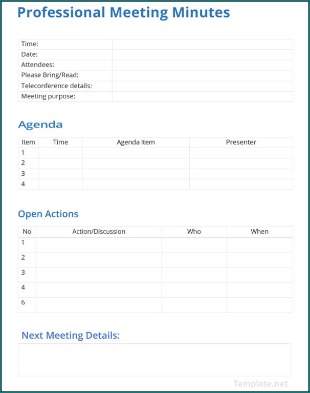 Professional Meeting Minutes Template Sample
