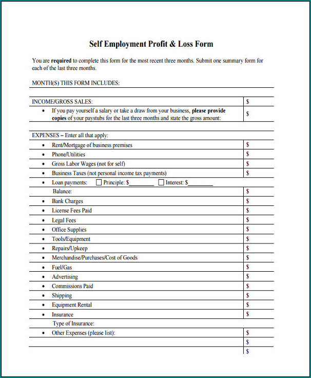 Profit And Loss Statement Template For Self Employed Example