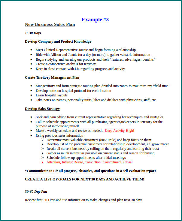Sample of Sales Business Plan Template